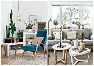 Decoration salon avec plantes for Chambre bébé design avec plantes appartement fleuries