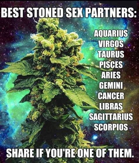 Images About Pot Humor Info On Pinterest Cannabis