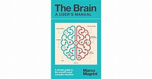 The Brain  A User U0026 39 S Manual  A Simple Guide To The World U0026 39 S