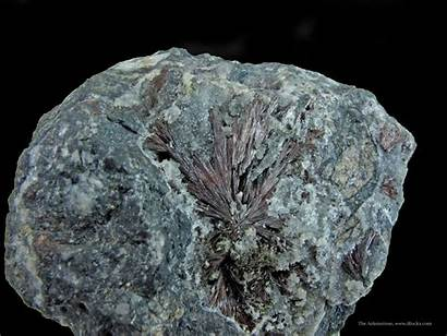 Mineral Minerals Specimens Fine Specimen Irocks Acicular