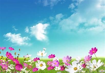 Desktop Spring Backgrounds Wallpapers Springtime Definition
