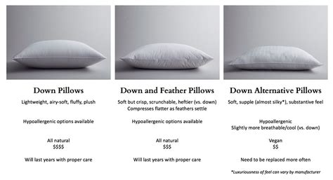 Pillows With A Difference by Vs Alternative Pillows What S The Difference