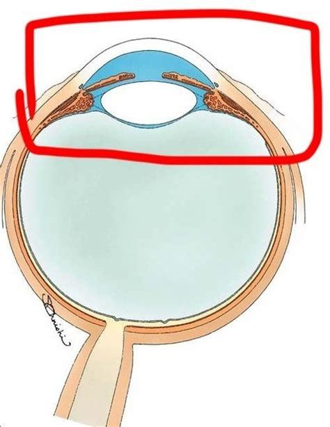 眼 圧 リセット
