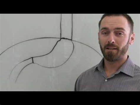 acid reflux  hiatal hernia adjustment youtube