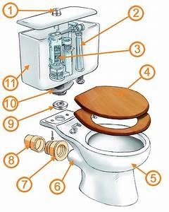 34 Rear Outlet Toilet Plumbing Diagram