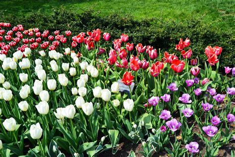 Eintritt Botanischer Garten New York by Sehensw 252 Rdigkeiten Sightseeing Und Things To Do