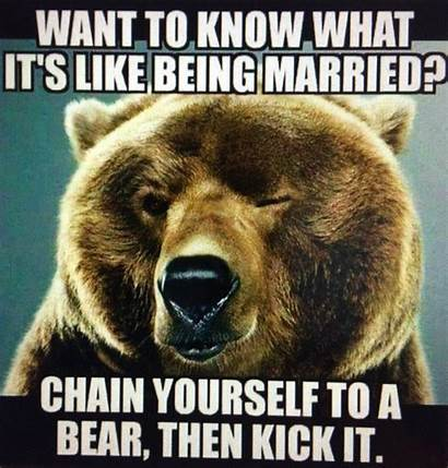 Memes Funny Humor Crazy Sarcastic Wtf Animals