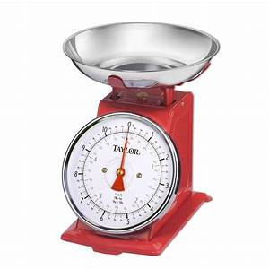 Taylor Analog Kitchen Scale in Stainless Steel-371021