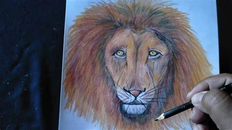 Cara gambar kepala singa dengan mudah dan cepat YouTube