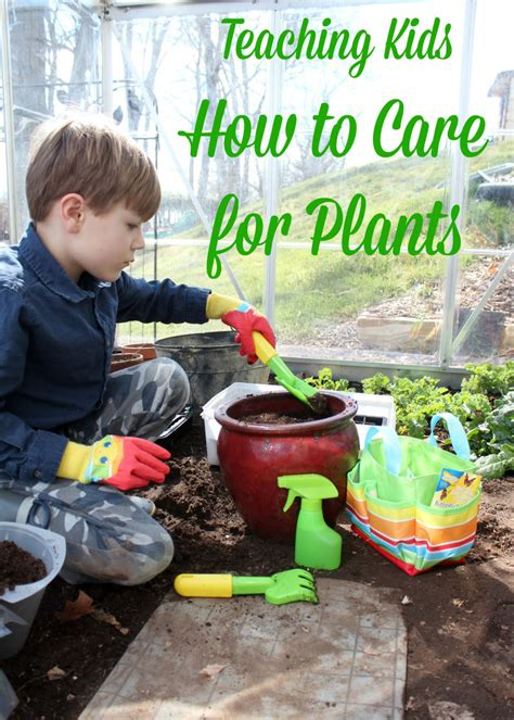 5 Tips To Teach Kids How To Care For Plants Melissa