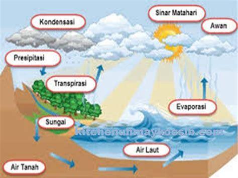 proses daur air pengertian urutan tahapan
