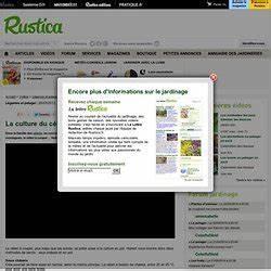 Celeri Branche Culture : c leris pearltrees ~ Melissatoandfro.com Idées de Décoration