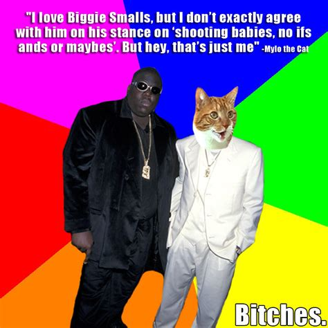 Biggie Smalls Meme - biggie smalls says the darndest things mylo the cat know your meme