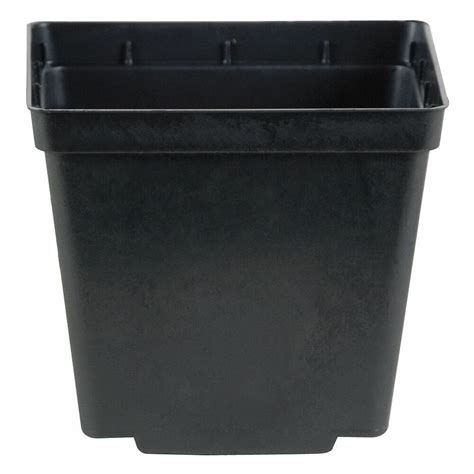 Square Plant Containers by Kord Square Black Pot 4 Inch Starter Pot Plant