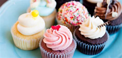 nadia cakes premier cupcake shop  custom cake studio
