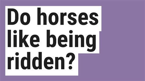 ridden being horses
