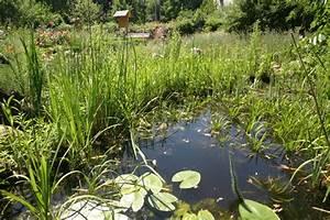 Teich Und Garten : naturnaher garten nabu hamburg ~ Frokenaadalensverden.com Haus und Dekorationen