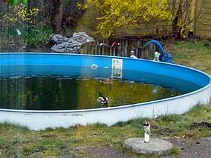 Was Kostet Ein Pool Im Garten : was kostet ein swimmingpool was kostet ein pool im garten ~ Sanjose-hotels-ca.com Haus und Dekorationen