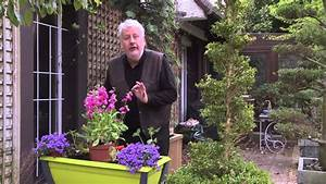 Jardiniere Fleurie Plein Soleil : comment composer une jardini re de printemps youtube ~ Melissatoandfro.com Idées de Décoration