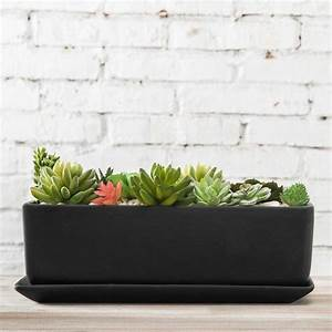 Rectangular, Ceramic, Succulent, Planter, With, Saucer, Black, U2013, Mygift