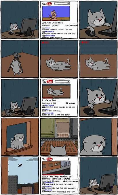 Cats Meme Know Random
