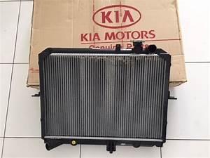 Radiador Original Com Tampa Kia Besta Gs 2 7