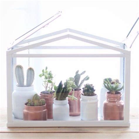 Ikea Mini Gewächshaus by Mini Serre Cactus Mini Invernadero Outdoor Haus