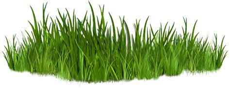 contact us best grass clipart 10835 clipartion com