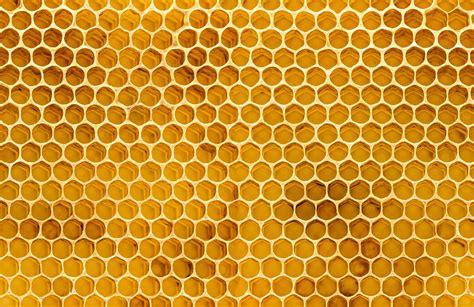 honeycomb texture wallpaper mural murals wallpaper