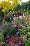 Beautiful plant mix | Petals and outdoor scenes beautiful flower gardens pinterest