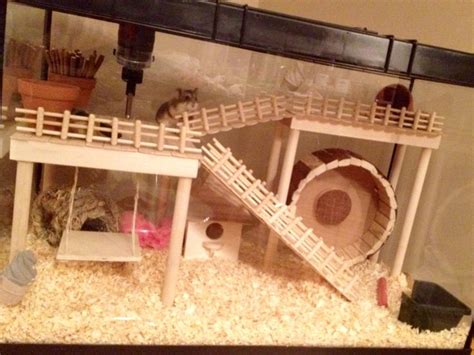 aquarium cages for hamsters 28 images 25 best ideas about hamster cages on hedgehog cage