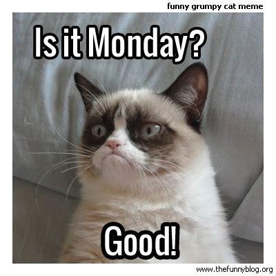 Monday Cat Meme - is it monday cat meme cat planet cat planet