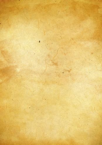 Old Parchment Paper Texture Stock Photo Download Image