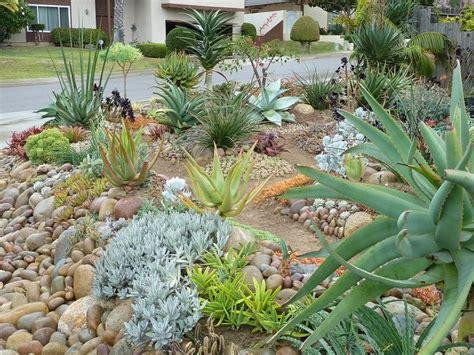 succulent front yard succulents front yard mediterranean landscape ideas pinterest