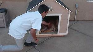 how to build a large dog house youtube With how to build a dog house youtube