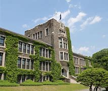 Мед университет в германии цена за год