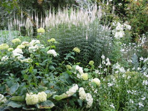 giardino vita realizzare un giardino romantico il giardino bianco