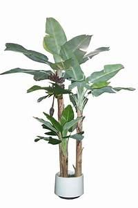 Artificial Tropical Palms  U0026 Plants