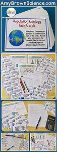 9727 Best Images About Task Cards  Teachers Pay Teachers On Pinterest