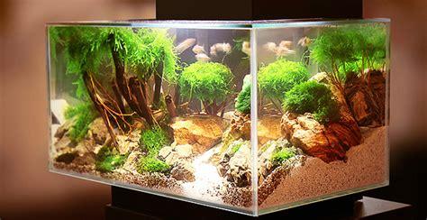 aquarium optimale wassermenge berechnen