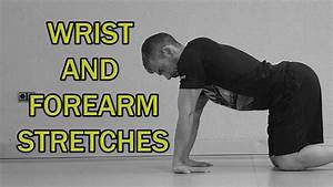The Complete Stretching Video Guide