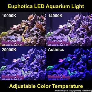 Optimale Aquarium Temperatur : 3pc 16 full spectrum dimmable 120w led aquarium light marine reef coral fish ebay ~ Yasmunasinghe.com Haus und Dekorationen