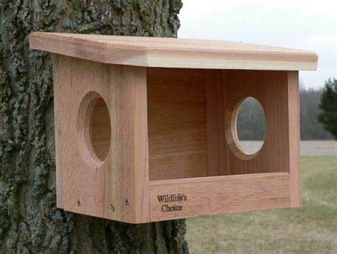 robin phoebe nest box size          dimensions