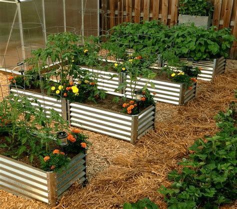 Raised Garden Bed by Build Your Own Corrugated Metal Raised Bed The Garden