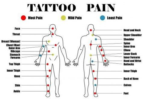 tattoo placement pain chart     planning