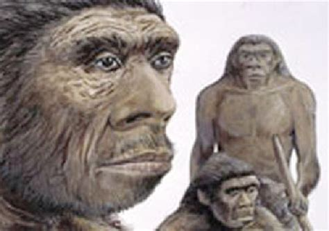 Ancient Russian's Dna Sheds Light On Neanderthal
