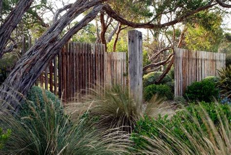 australian coastal garden design dry garden with grasses clipped shrubs windswept trees open wood fence wabisabi by fiona
