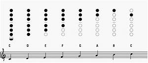 Saxophone Chart Pdf Saxophone Charts The Best And Easiest To Use