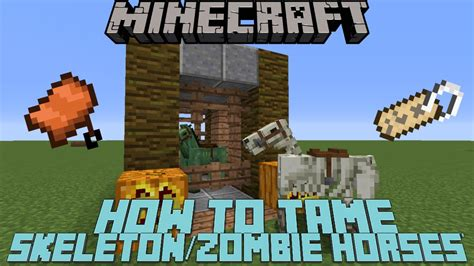 minecraft skeleton horse tame zombie ride