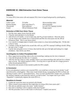 dna extraction lab report dna extraction lab report college homework help and